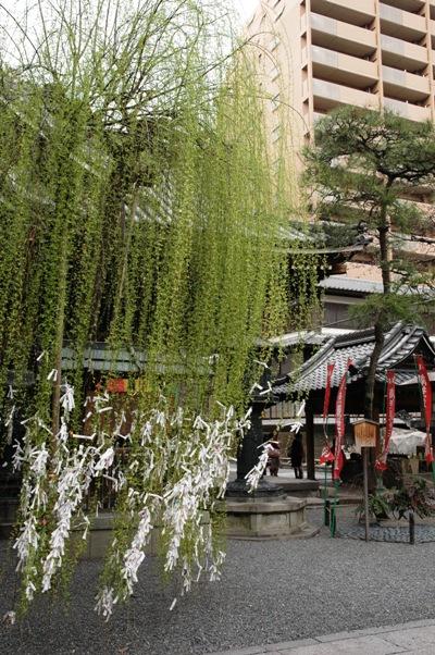 Kyoto19